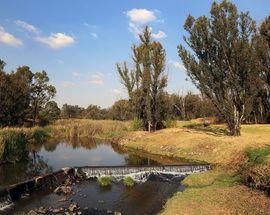 Modderfontein Reserve