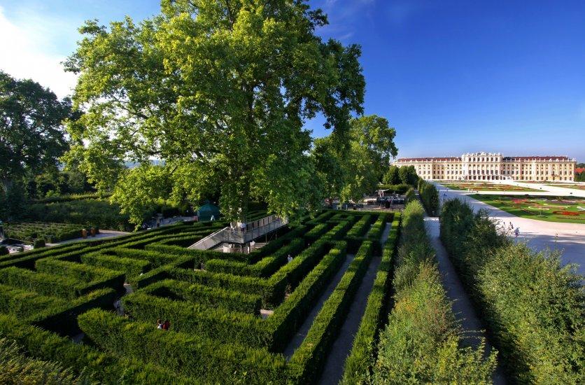 Irrgarten Schonbrunn Labyrinth Sights Vienna